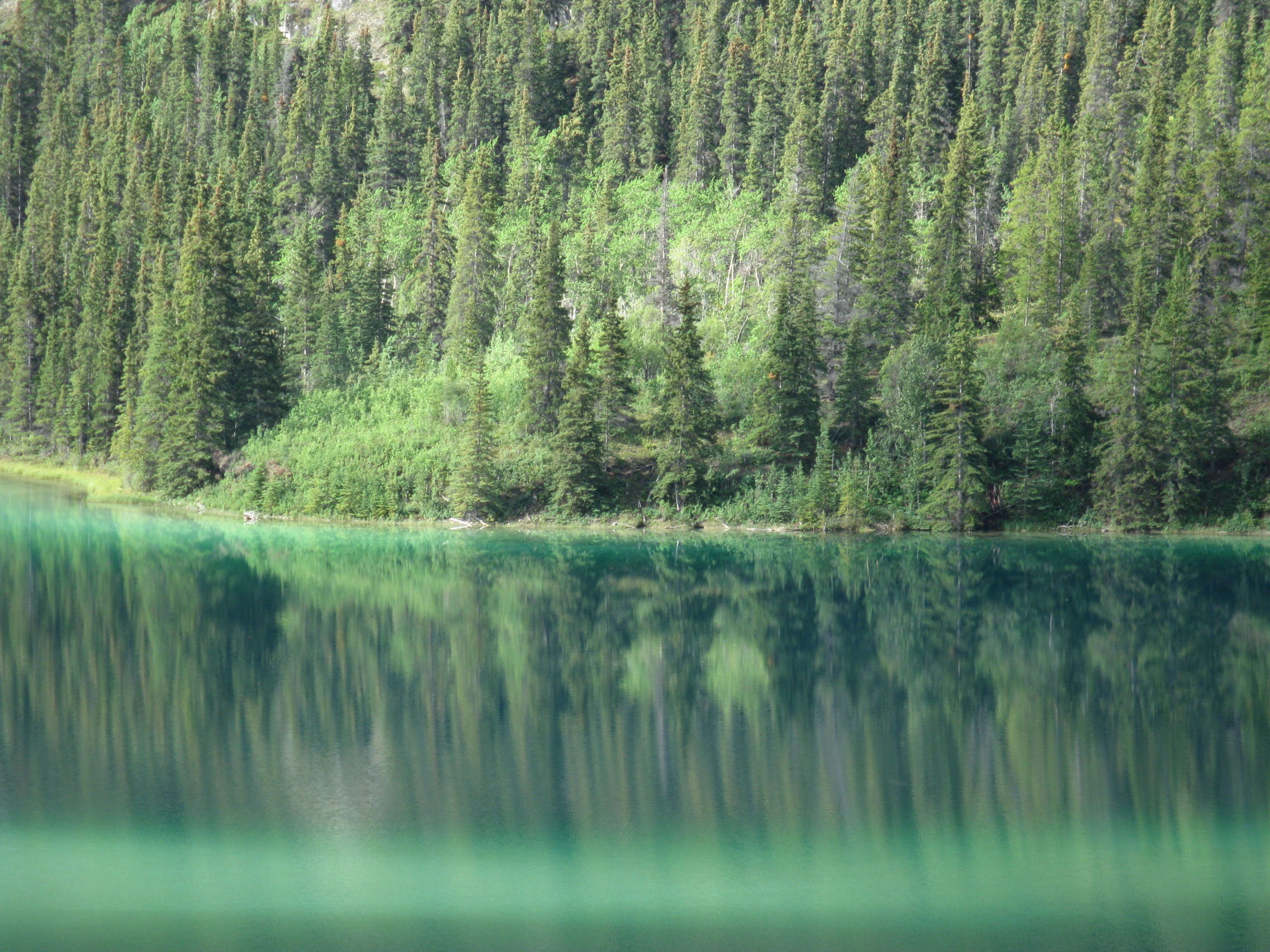 reflections nature mirror british columbia pin oc emerald landscape at lake photos