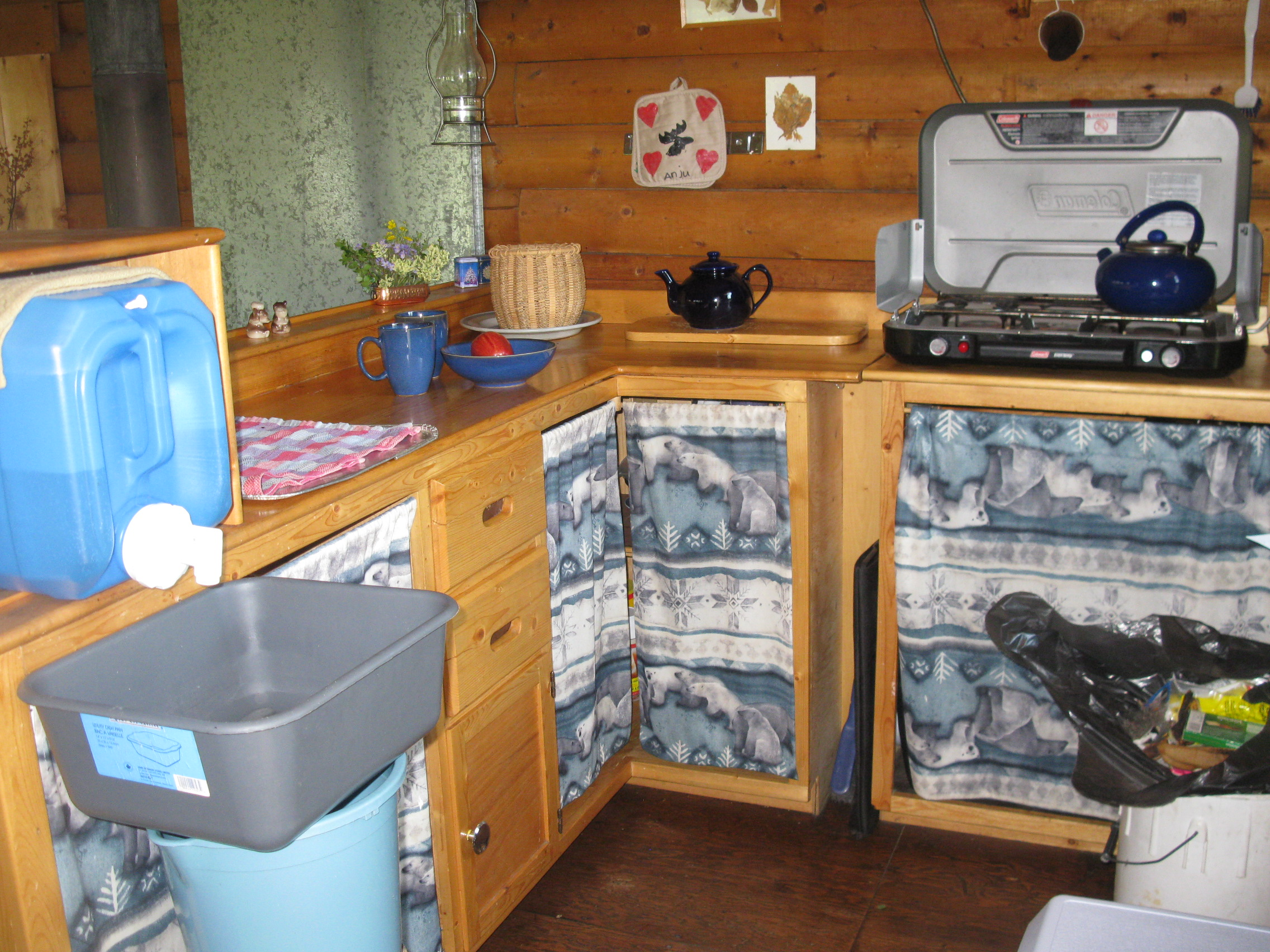 cabin rental kitchen area